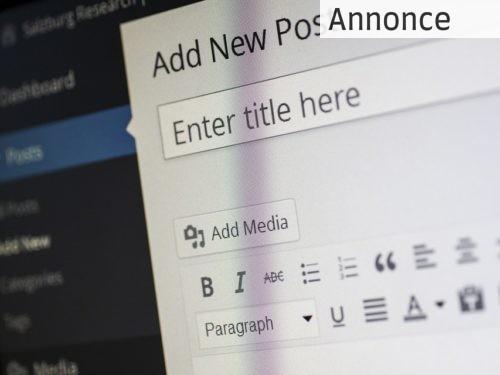 4 faser til en god hjemmeside